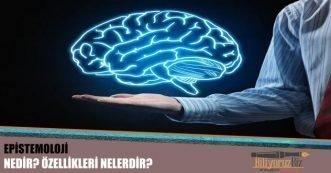 Epistemoloji  ( Bilgi Teorisi) Nedir? Özellikleri Nelerdir ?