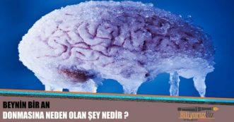 Beynin Bir An Donmasına Sebep Olan Şey Nedir ?