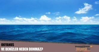 Okyanus ve Denizler Neden Donmaz?