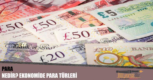 Para Nedir? Ekonomide Para Türleri Nelerdir?