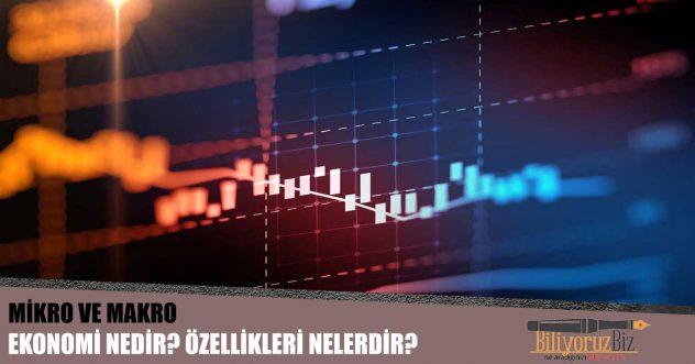 Mikro ve Makro Ekonomi Nedir? Aralarındaki Fark Nedir?